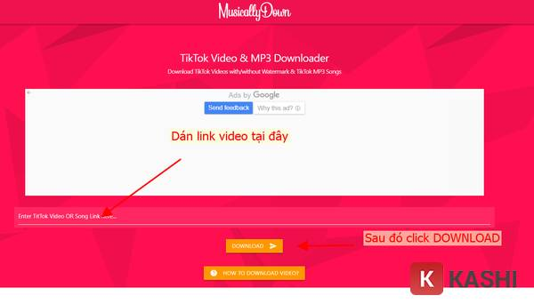 Giao diện website MusicalDown