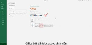 Active office 365